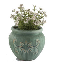 Buy Traditional Pot Shape Glossy Green Planter Pot housewarming-gift online