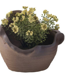 Buy Uniquely Designed Brown Ceramic Planter Pot pot online
