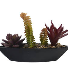 Buy Maroon  and  Green Artificial Plant with Boat Shape Pot pot online