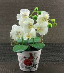 Buy Artifical Flower With Ceramic Pot thanksgiving-gift online