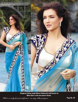 Blue Net Saree with heavy border
