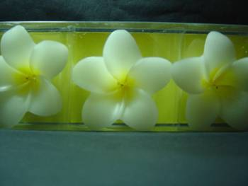 Plumeria Floating Candles ( Yellow)