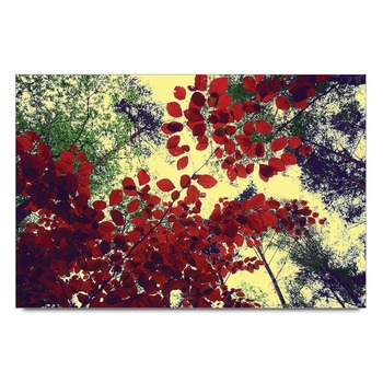 Autumn Leaves 2 Poster