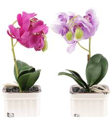 Buy Set of 2 Pink  and  Purple Big Artificial Floral Plants with Pots flower online