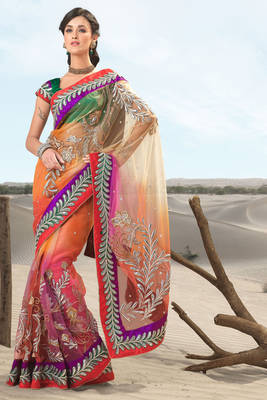 Multi Colored Net Sari