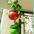 Planters (Red & Green)